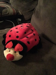 My little lady bug...